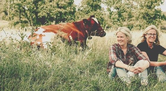 Två kvinnor och kor